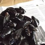 mussels kitchen